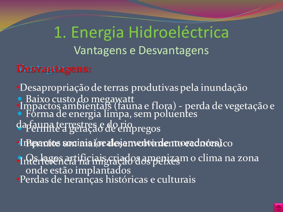 Vantagens Baixo custo do megawatt Forma de energia limpa, sem poluentes Permite a geração de empregos Permite um maior desenvolvimento económico Os la