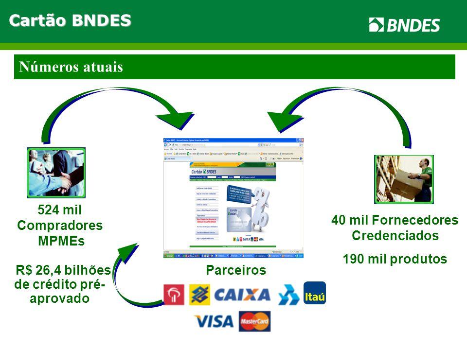 40 mil Fornecedores Credenciados 190 mil produtos 524 mil Compradores MPMEs R$ 26,4 bilhões de crédito pré- aprovado Parceiros Números atuais Cartão BNDES