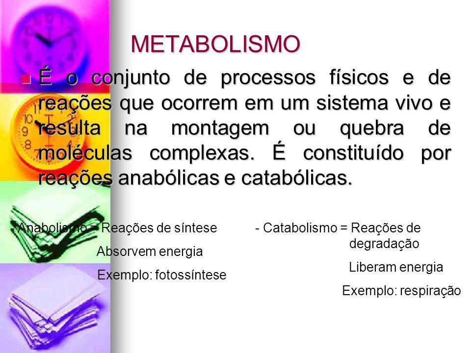 METABOLISMO É o conjunto de processos físicos e de reações que ocorrem em um sistema vivo e resulta na montagem ou quebra de moléculas complexas. É co