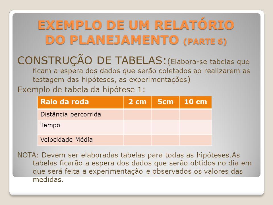 EXEMPLO DE UM RELATÓRIO DO PLANEJAMENTO (PARTE 6) CONSTRUÇÃO DE TABELAS: ( Elabora-se tabelas que ficam a espera dos dados que serão coletados ao real