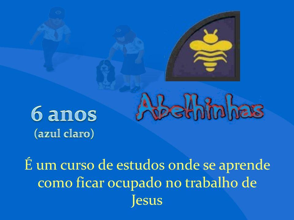 É um curso de estudos onde se aprende como ficar ocupado no trabalho de Jesus