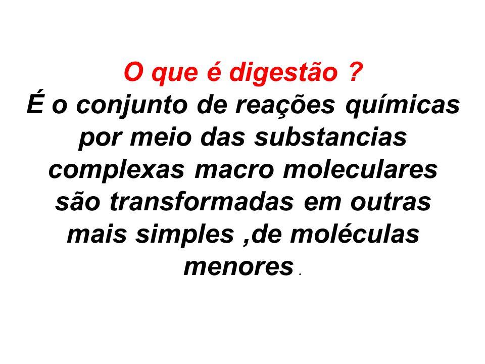 O que é digestão ? É o conjunto de reações químicas por meio das substancias complexas macro moleculares são transformadas em outras mais simples,de m