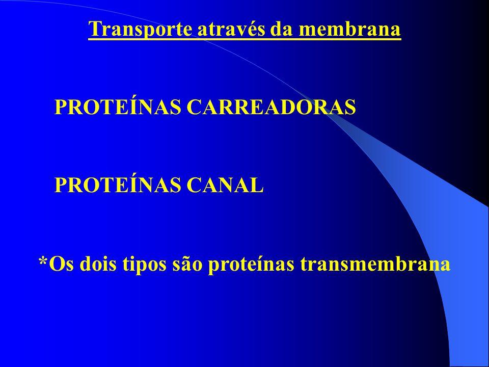 Transporte através da membrana PROTEÍNAS CARREADORAS PROTEÍNAS CANAL *Os dois tipos são proteínas transmembrana