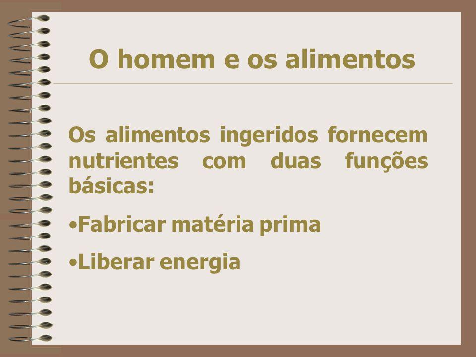 O homem e os alimentos Os alimentos ingeridos fornecem nutrientes com duas funções básicas: Fabricar matéria prima Liberar energia