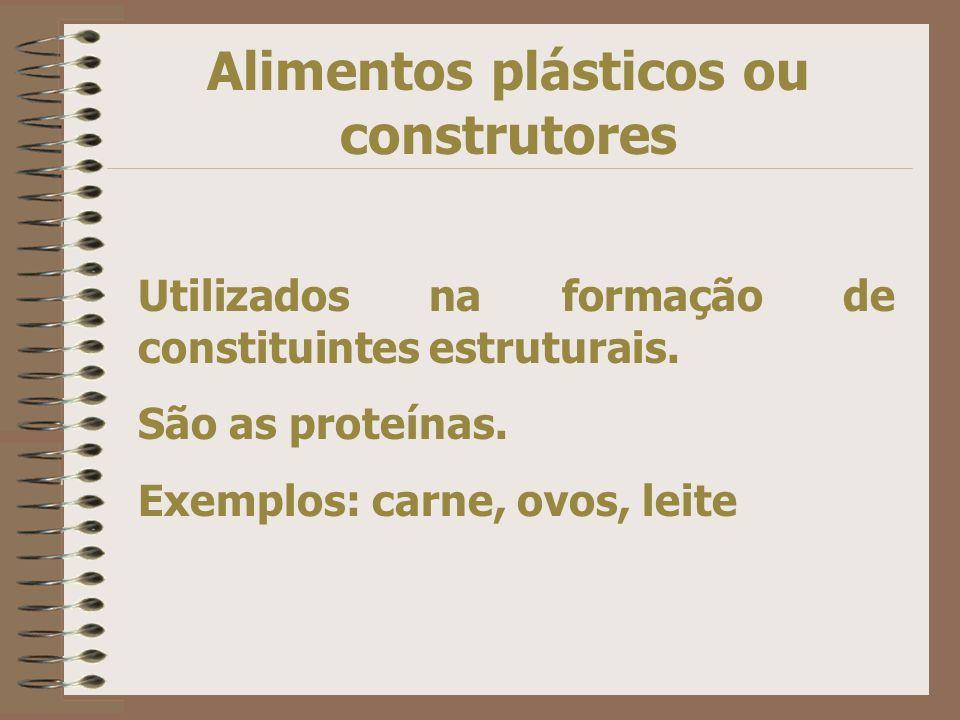 Alimentos plásticos ou construtores Utilizados na formação de constituintes estruturais.
