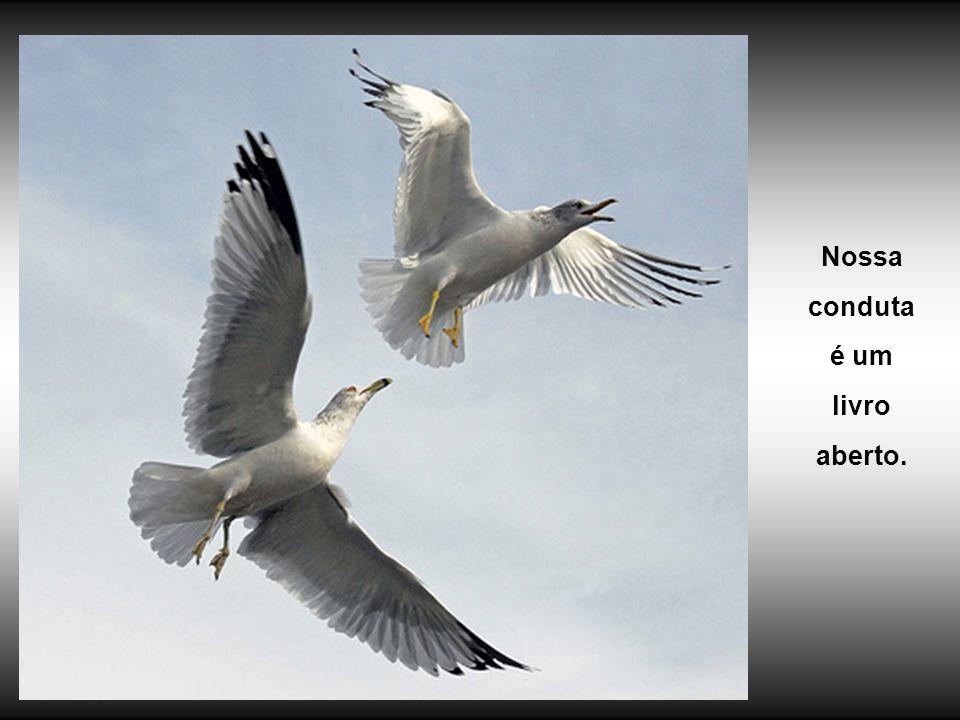 É preciso saber, portanto, que espécie de forças projetamos naqueles que nos cercam.
