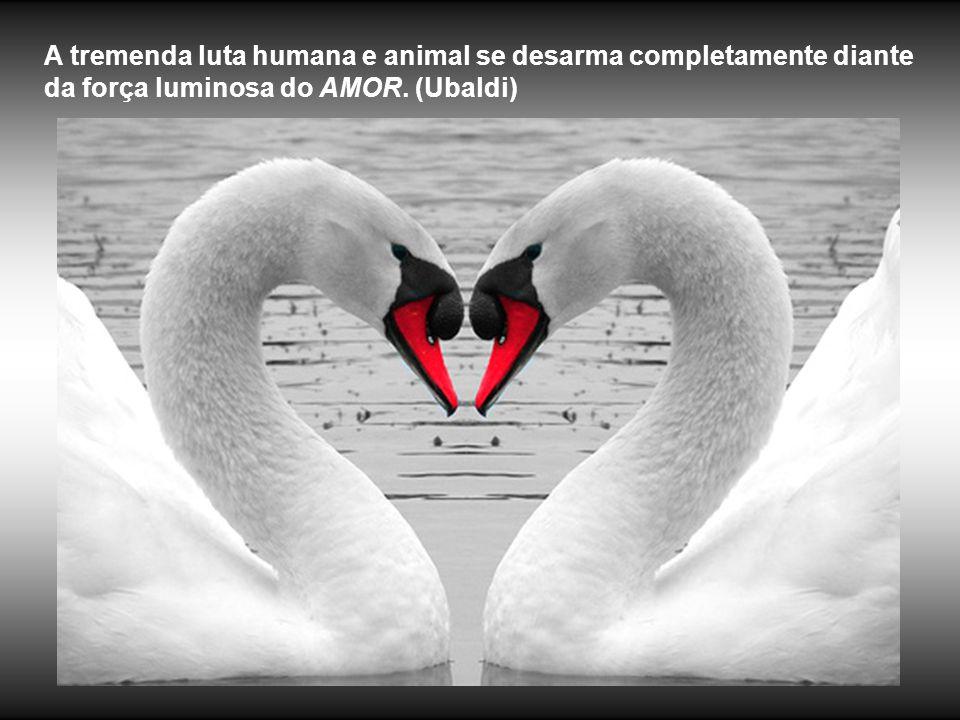 O Amor vai se transformando, ao longo da evolução, desde o amor egoísta, familiar, nacional, humanidade, altruísta até a unificação com Deus.