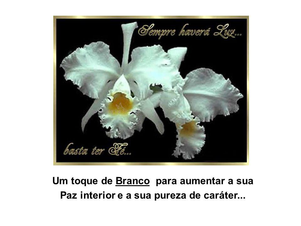 Um toque de Branco para aumentar a sua Paz interior e a sua pureza de caráter...