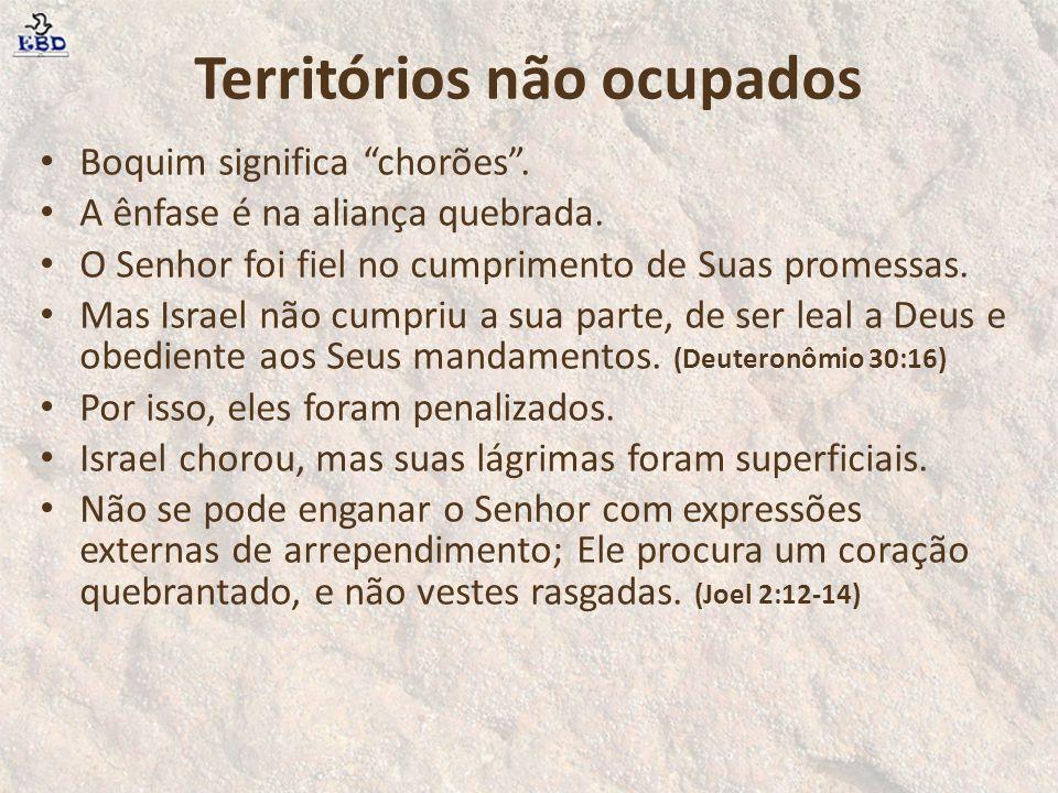 """Territórios não ocupados Boquim significa """"chorões"""". A ênfase é na aliança quebrada. O Senhor foi fiel no cumprimento de Suas promessas. Mas Israel nã"""