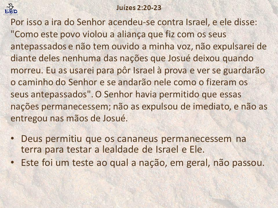 Por isso a ira do Senhor acendeu-se contra Israel, e ele disse: