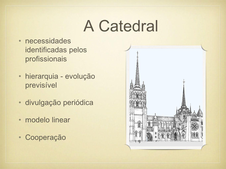 necessidades identificadas pelos profissionais hierarquia - evolução previsível divulgação periódica modelo linear Cooperação A Catedral