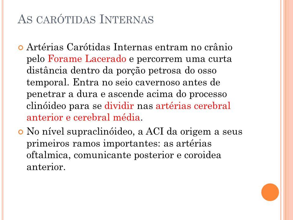 A S CARÓTIDAS I NTERNAS Artérias Carótidas Internas entram no crânio pelo Forame Lacerado e percorrem uma curta distância dentro da porção petrosa do