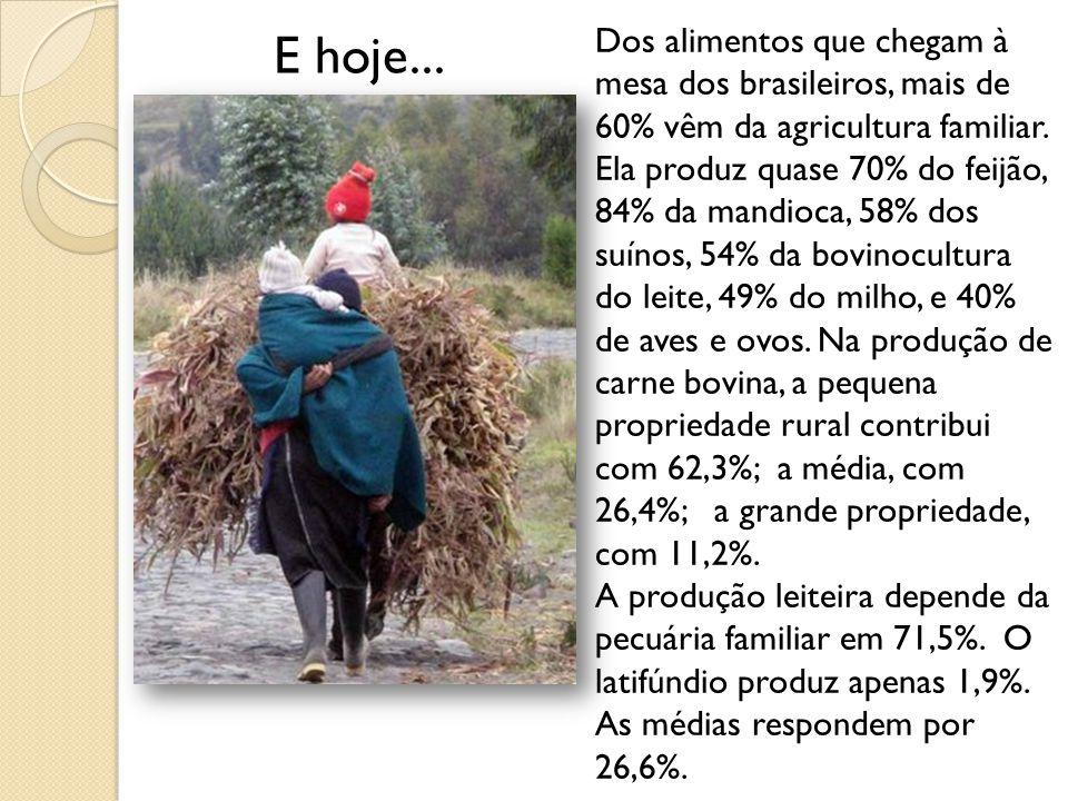 E hoje...Dos alimentos que chegam à mesa dos brasileiros, mais de 60% vêm da agricultura familiar.