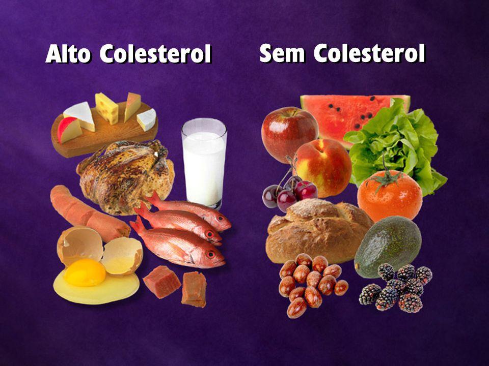 Alto Colesterol Sem Colesterol