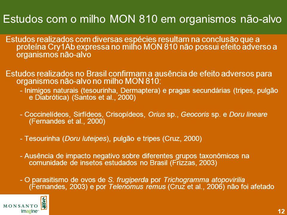 12 Estudos com o milho MON 810 em organismos não-alvo Estudos realizados com diversas espécies resultam na conclusão que a proteína Cry1Ab expressa no