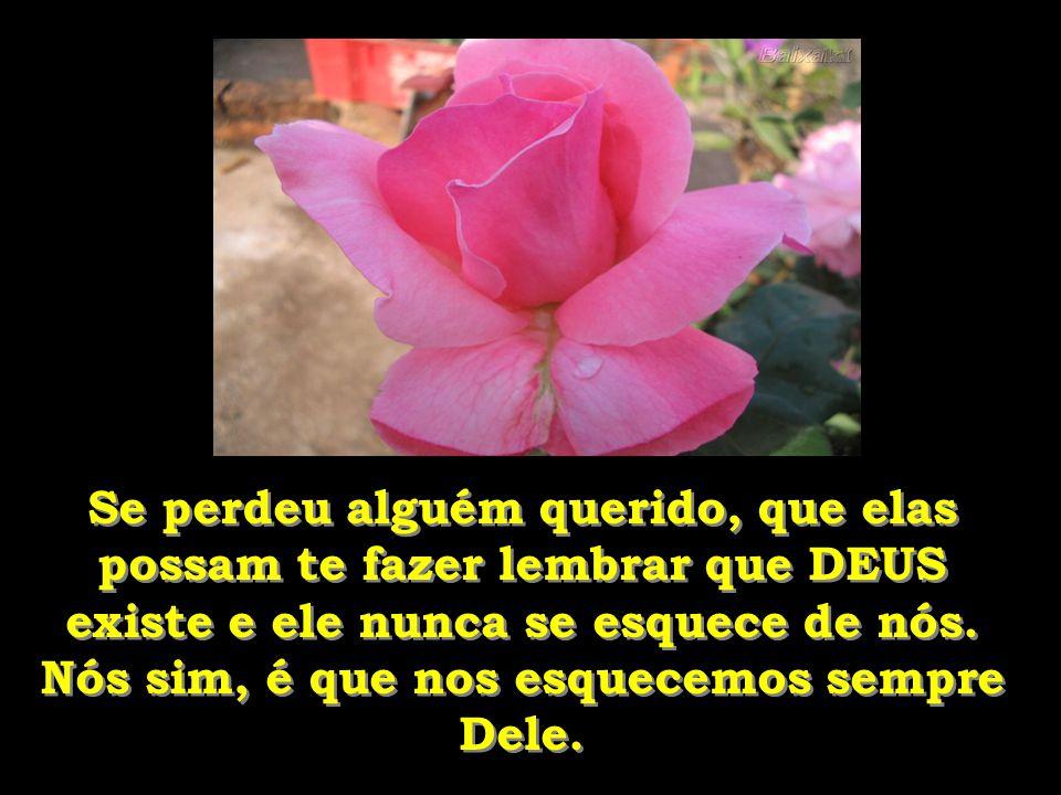 Se perdeu alguém querido, que elas possam te fazer lembrar que DEUS existe e ele nunca se esquece de nós.