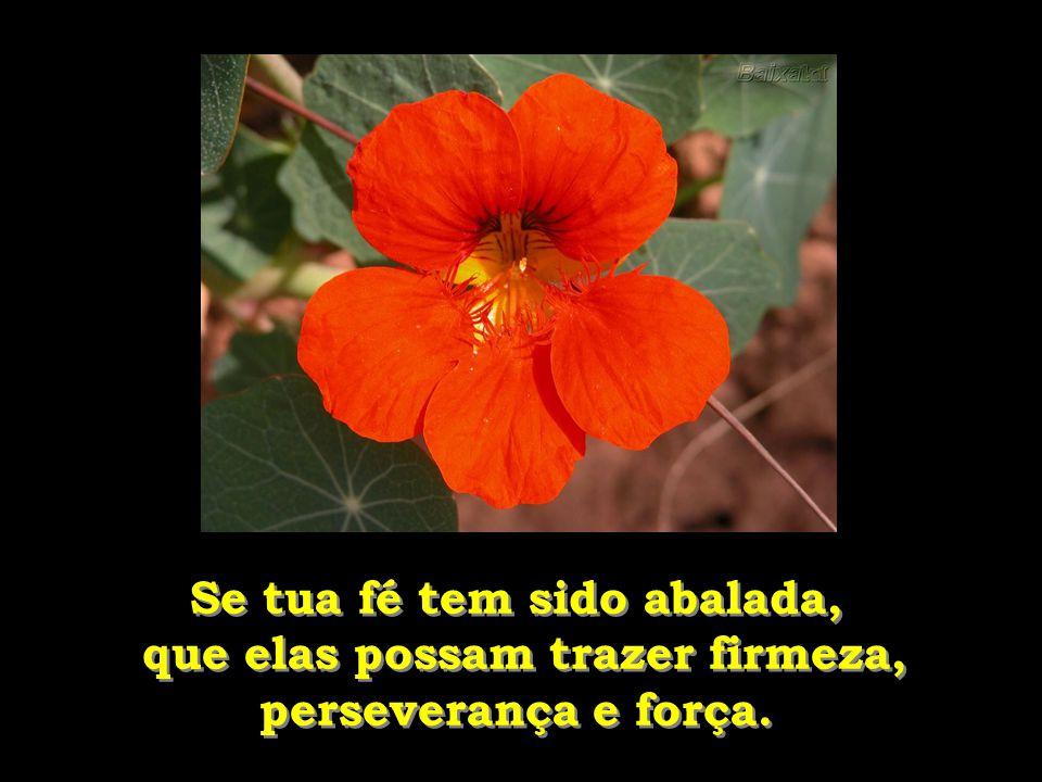 Se tua fé tem sido abalada, que elas possam trazer firmeza, perseverança e força.
