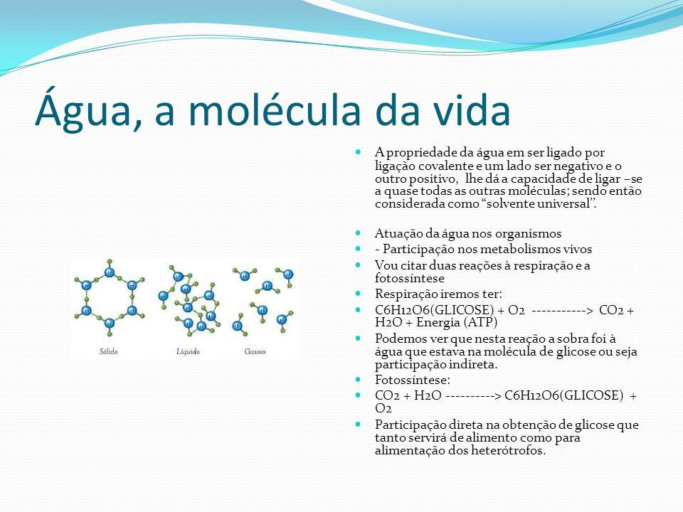 Água, a molécula da vida A propriedade da água em ser ligado por ligação covalente e um lado ser negativo e o outro positivo, lhe dá a capacidade de l
