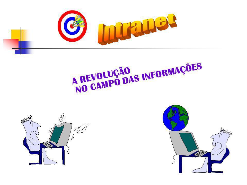A REVOLUÇÃO NO CAMPO DAS INFORMAÇÕES