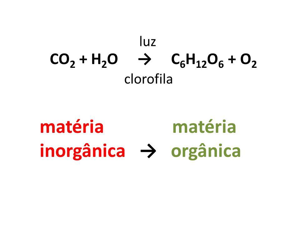 CO 2 + H 2 O → C 6 H 12 O 6 + O 2 luz clorofila matéria matéria inorgânica → orgânica