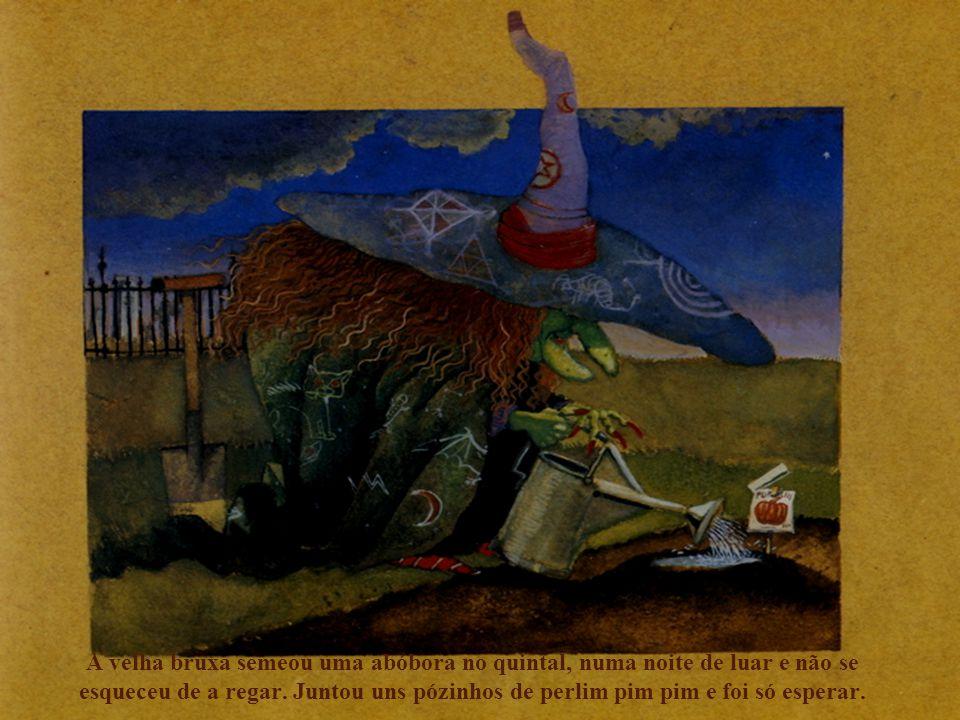 A velha bruxa semeou uma abóbora no quintal, numa noite de luar e não se esqueceu de a regar. Juntou uns pózinhos de perlim pim pim e foi só esperar.