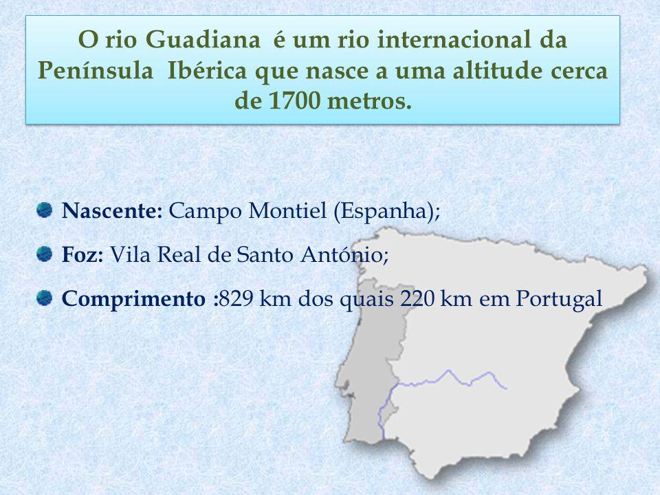 O rio Guadiana é um rio internacional da Península Ibérica que nasce a uma altitude cerca de 1700 metros. Nascente: Campo Montiel (Espanha); Foz: Vila