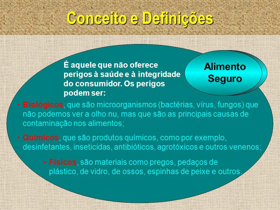 Conceito e Definições Físicos, são materiais como pregos, pedaços de plástico, de vidro, de ossos, espinhas de peixe e outros. Biológicos, que são mic