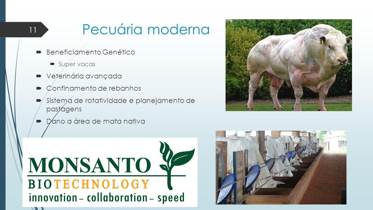 Pecuária moderna  Beneficiamento Genético  Super vacas  Veterinária avançada  Confinamento de rebanhos  Sistema de rotatividade e planejamento de