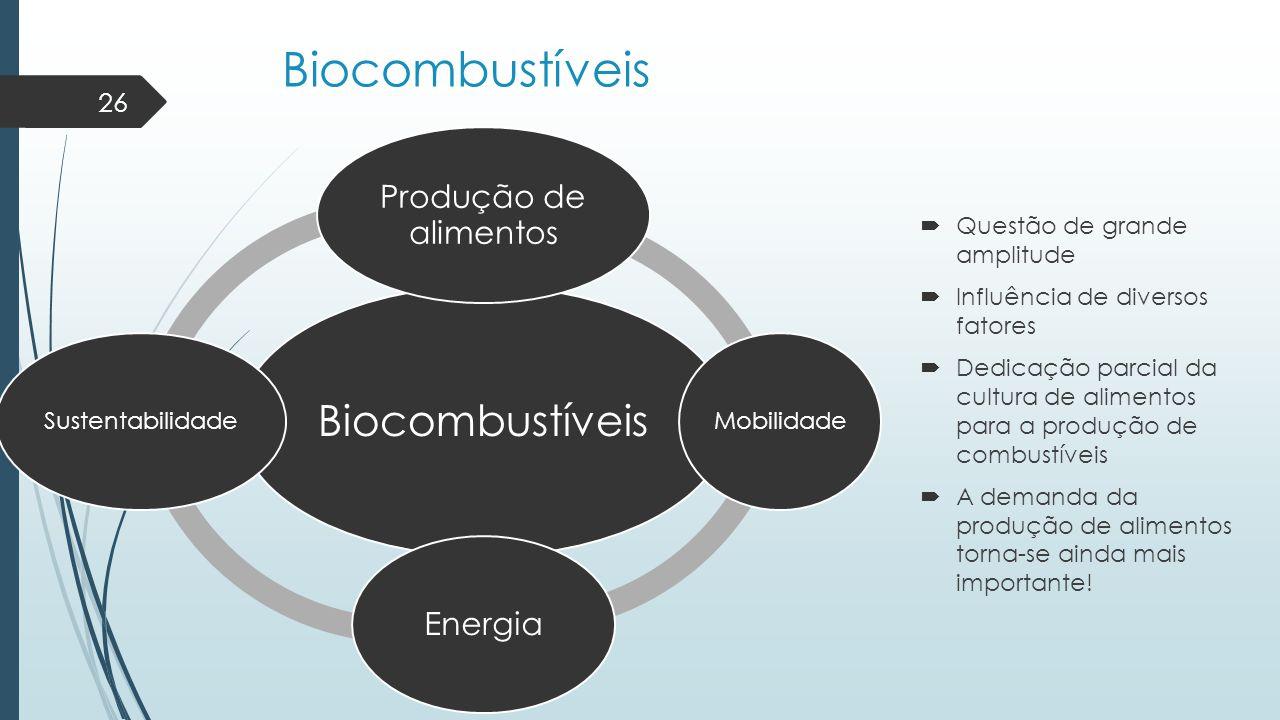 Biocombustíveis  Questão de grande amplitude  Influência de diversos fatores  Dedicação parcial da cultura de alimentos para a produção de combustí