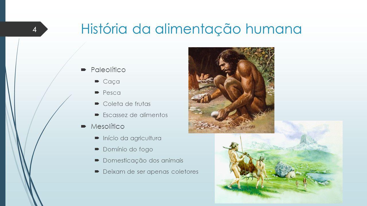 História da alimentação humana  Paleolítico  Caça  Pesca  Coleta de frutas  Escassez de alimentos  Mesolítico  Início da agricultura  Domínio