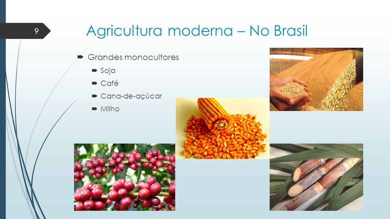 Agricultura moderna – No Brasil  Grandes monocultores  Soja  Café  Cana-de-açúcar  Milho 9