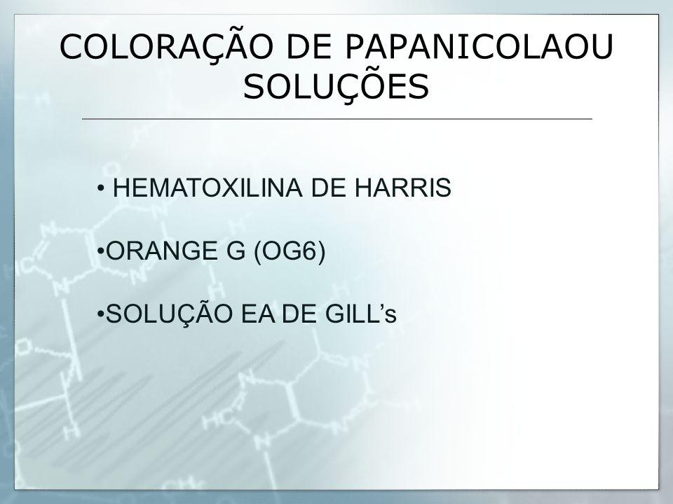 COLORAÇÃO DE PAPANICOLAOU SOLUÇÕES HEMATOXILINA DE HARRIS ORANGE G (OG6) SOLUÇÃO EA DE GILL's