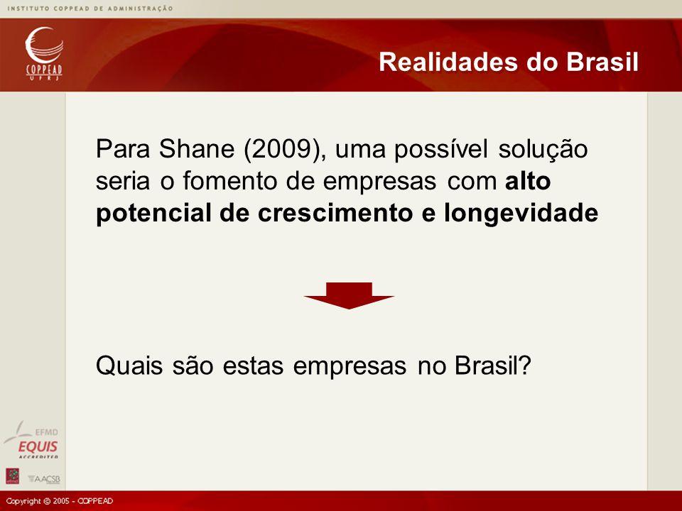 Para Shane (2009), uma possível solução seria o fomento de empresas com alto potencial de crescimento e longevidade Realidades do Brasil Quais são estas empresas no Brasil?