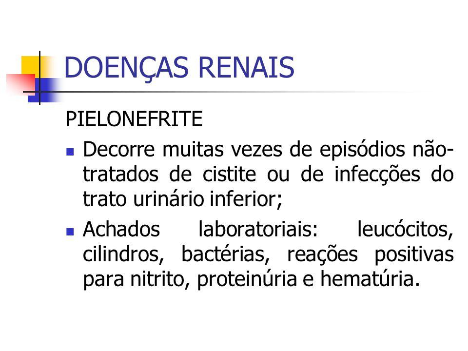 DOENÇAS RENAIS PIELONEFRITE Decorre muitas vezes de episódios não- tratados de cistite ou de infecções do trato urinário inferior; Achados laboratoria