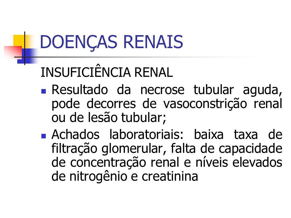 DOENÇAS RENAIS INSUFICIÊNCIA RENAL Resultado da necrose tubular aguda, pode decorres de vasoconstrição renal ou de lesão tubular; Achados laboratoriai