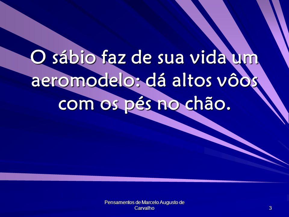 Pensamentos de Marcelo Augusto de Carvalho 3 O sábio faz de sua vida um aeromodelo: dá altos vôos com os pés no chão.