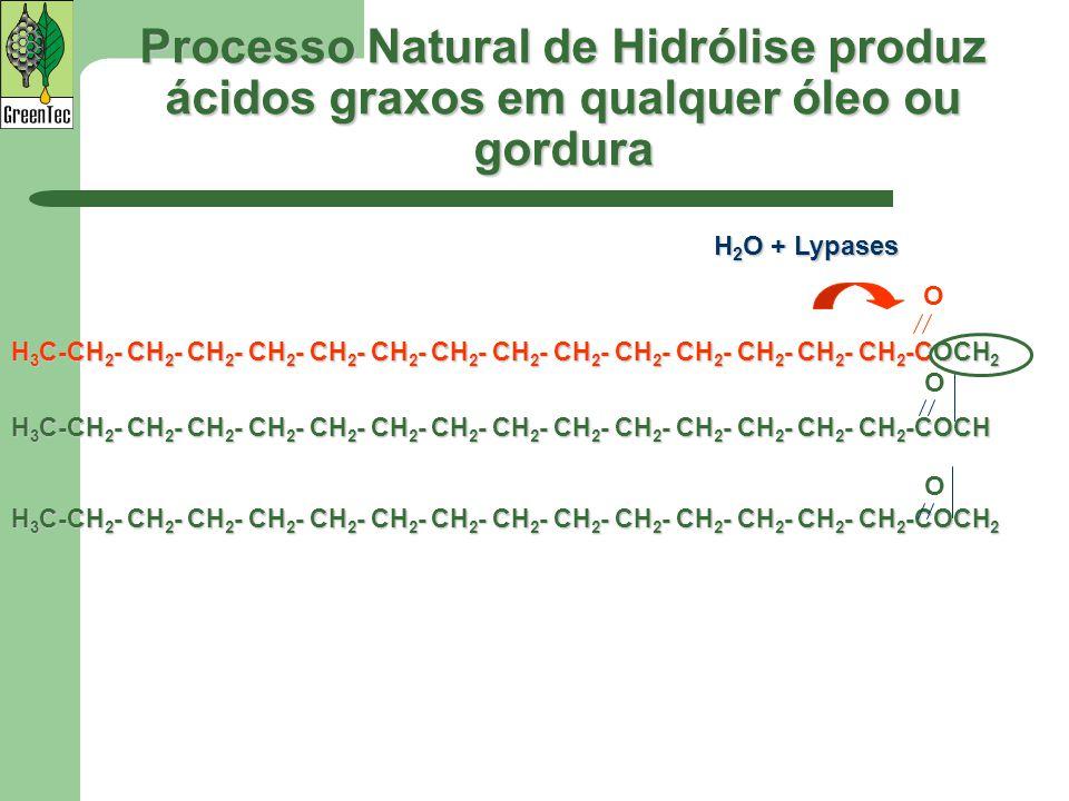 Processo Natural de Hidrólise produz ácidos graxos em qualquer óleo ou gordura H 3 C-CH 2 - CH 2 - CH 2 - CH 2 - CH 2 - CH 2 - CH 2 - CH 2 - CH 2 - CH