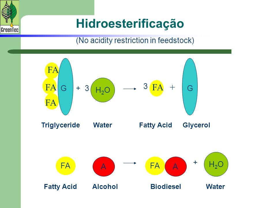 TriglycerideFatty Acid FA FA +FA WaterGlycerol Hidroesterificação + 3G H2OH2O G 3 FA A A H2OH2O + Fatty Acid Alcohol Biodiesel Water (No acidity restr