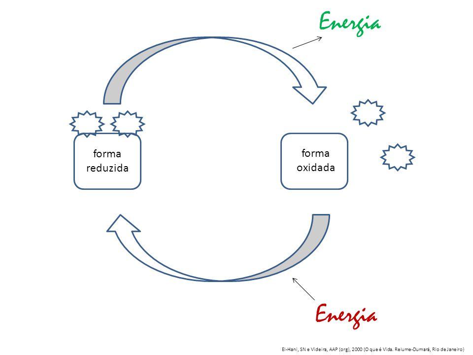 forma reduzida forma oxidada Energia El-Hani, SN e Videira, AAP (org), 2000 (O que é Vida. Relume-Dumará, Rio de Janeiro)
