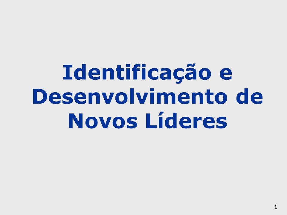 1 Identificação e Desenvolvimento de Novos Líderes