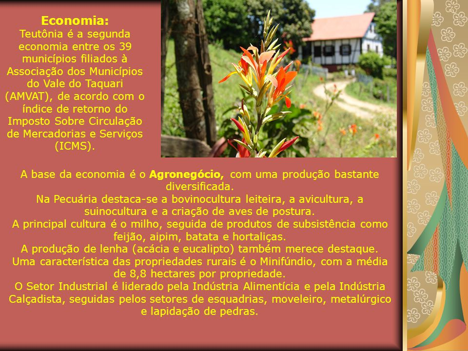 Bairro Canabarro - Teutônia-RS Na área da saúde, o município possui:  01 Hospital;  04 Unidades Básicas de Saúde;  01 Unidade Móvel de Saúde e  01