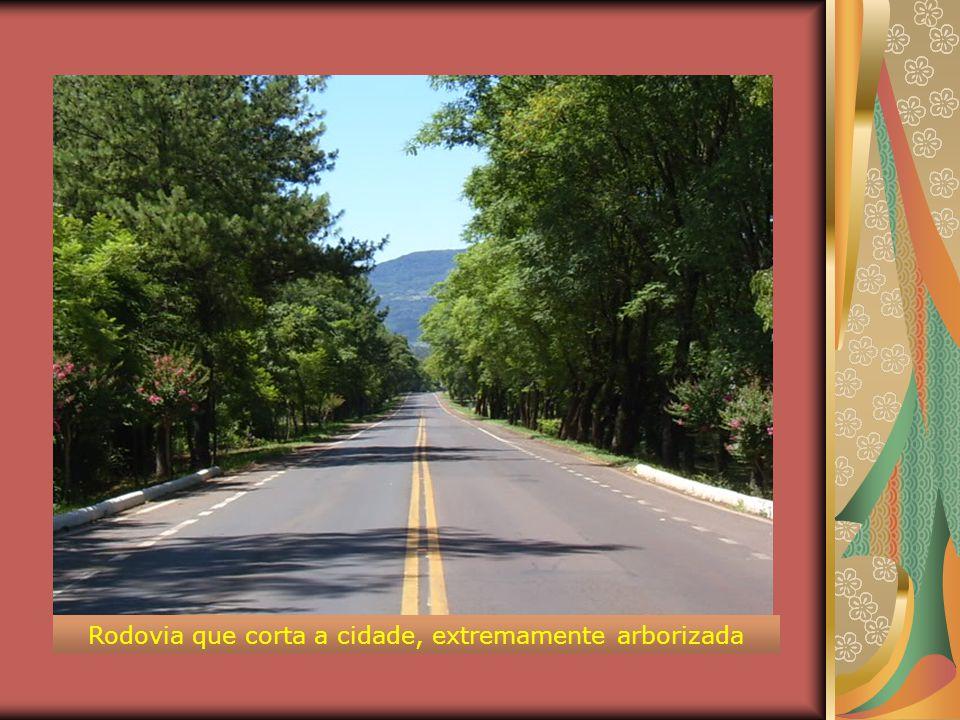 Microrregião: Lajeado-Estrela Mesorregião: Centro Oriental Rio-Grandense Altitude da Sede: 100 m Distância da Capital: 110 km Aspectos Físicos Teutôni