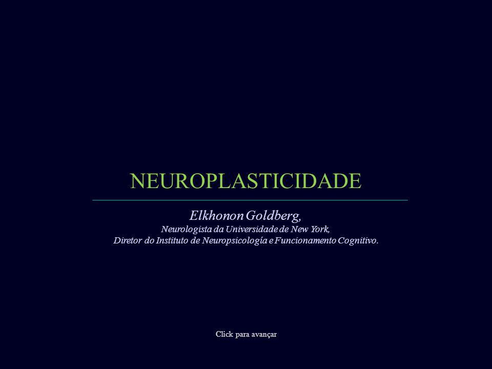 NEUROPLASTICIDADE Click para avançar Elkhonon Goldberg, Neurologista da Universidade de New York, Diretor do Instituto de Neuropsicología e Funcionamento Cognitivo.