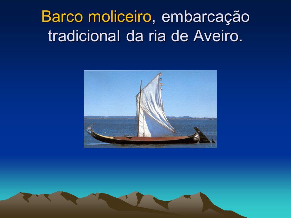 Barco moliceiro, embarcação tradicional da ria de Aveiro.