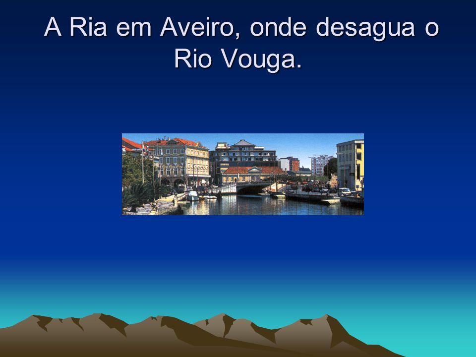 A Ria em Aveiro, onde desagua o Rio Vouga. A Ria em Aveiro, onde desagua o Rio Vouga.
