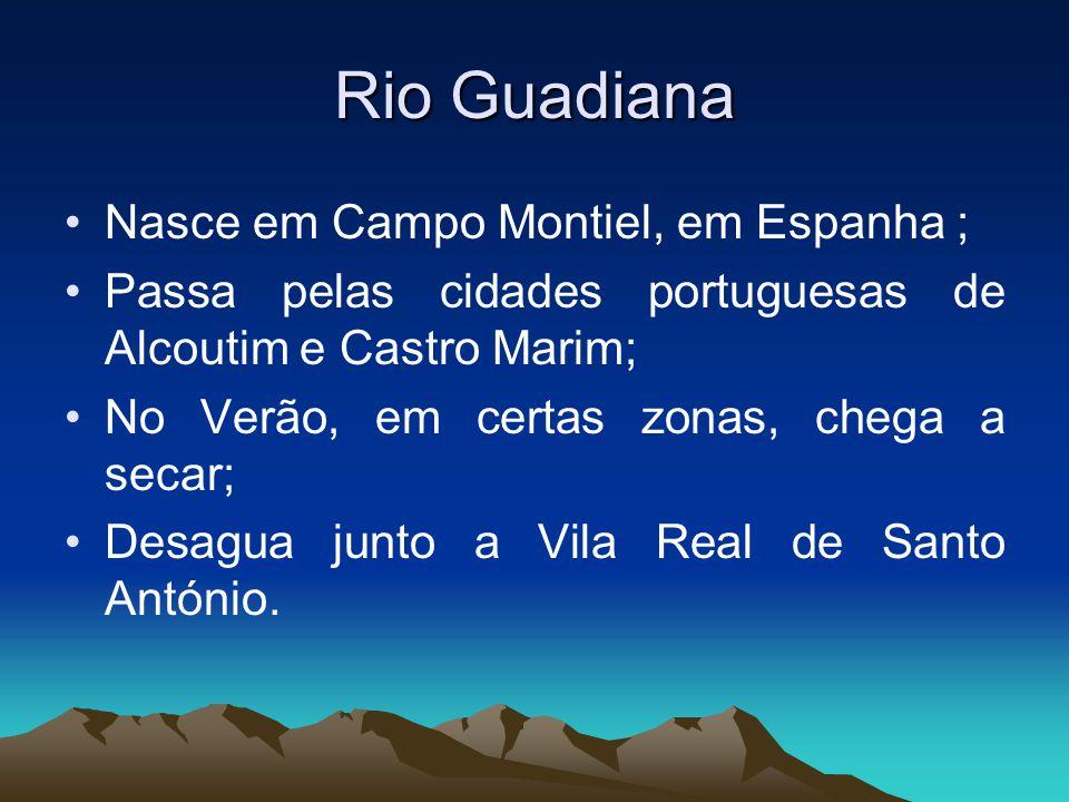 Rio Guadiana Nasce em Campo Montiel, em Espanha ; Passa pelas cidades portuguesas de Alcoutim e Castro Marim; No Verão, em certas zonas, chega a secar; Desagua junto a Vila Real de Santo António.