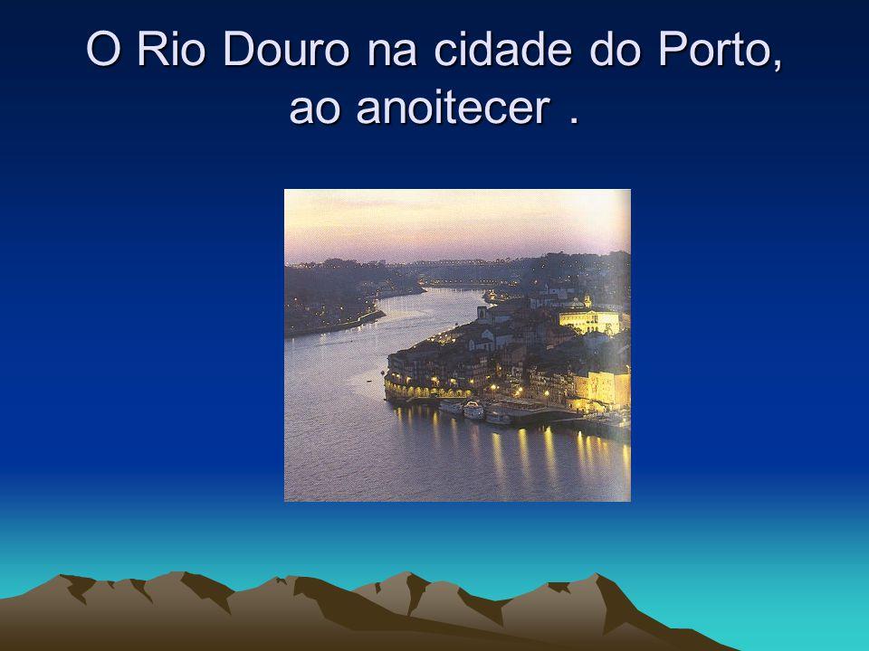 Rio Vouga Nasce na Serra da Lapa, em Portugal; Passa pelas cidades de S.