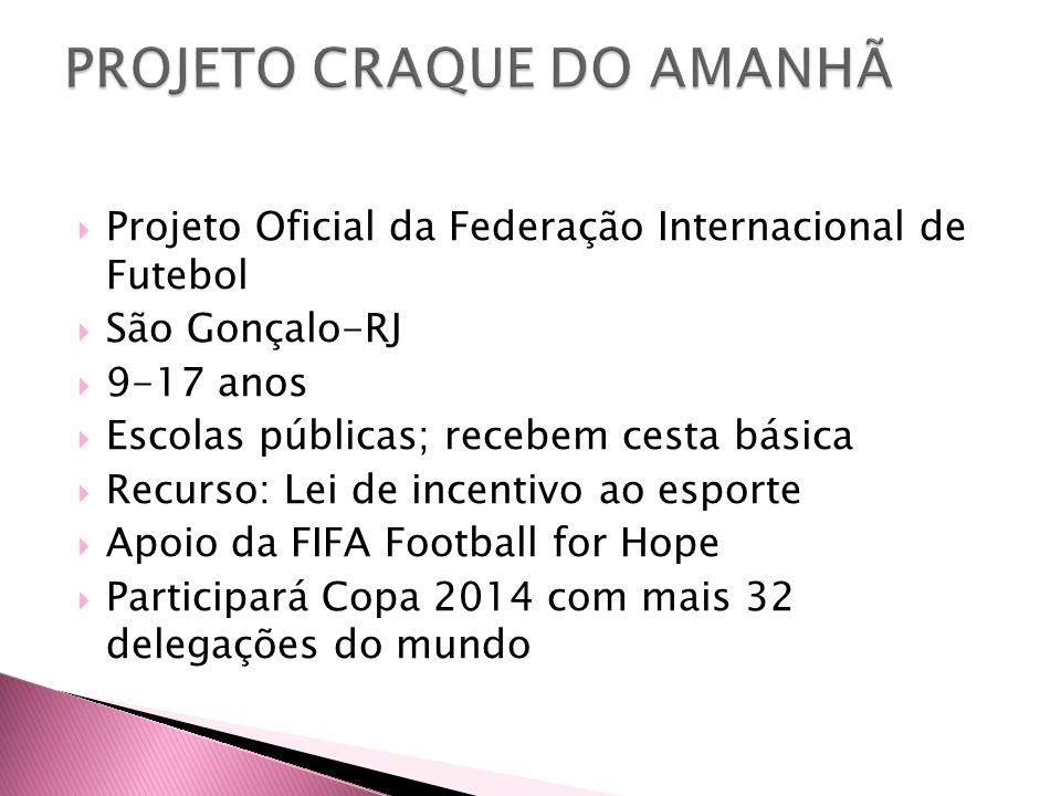  Projeto Oficial da Federação Internacional de Futebol  São Gonçalo-RJ  9-17 anos  Escolas públicas; recebem cesta básica  Recurso: Lei de incent