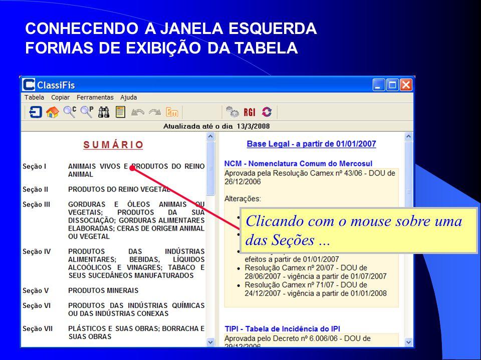 Clicando com o mouse sobre uma das Seções... CONHECENDO A JANELA ESQUERDA FORMAS DE EXIBIÇÃO DA TABELA