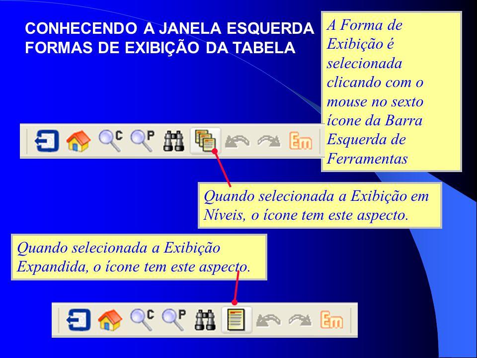 A Forma de Exibição é selecionada clicando com o mouse no sexto ícone da Barra Esquerda de Ferramentas Quando selecionada a Exibição em Níveis, o ícon